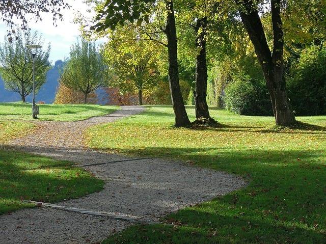autumn-199012_640