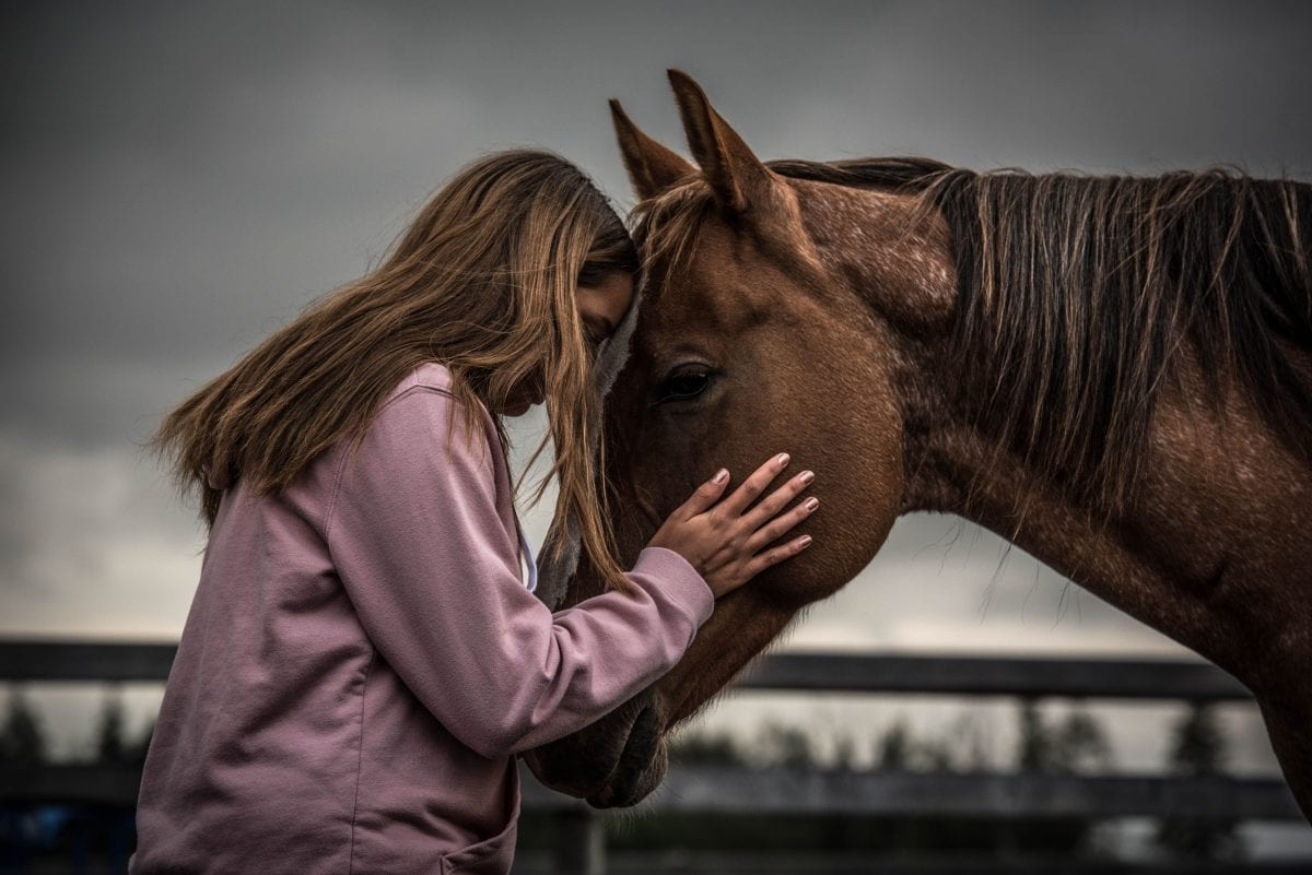 girl face to face with her horse