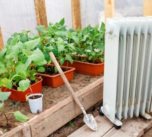 growing plants indoors next to a grow tent heater