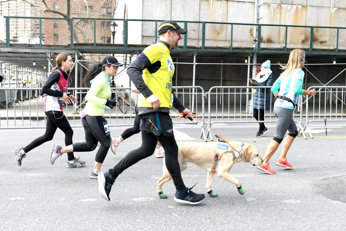 People running with a dog