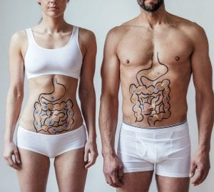 healthy man and woman with their digestive systems drawn on their bodies
