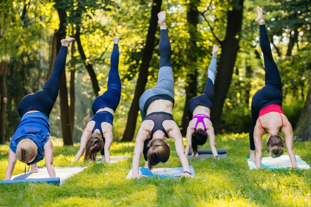women doing a workout in the park