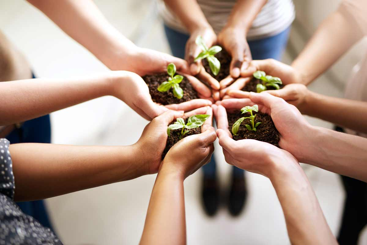 people in a circle holding plants