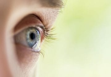 a side view of a persons eye